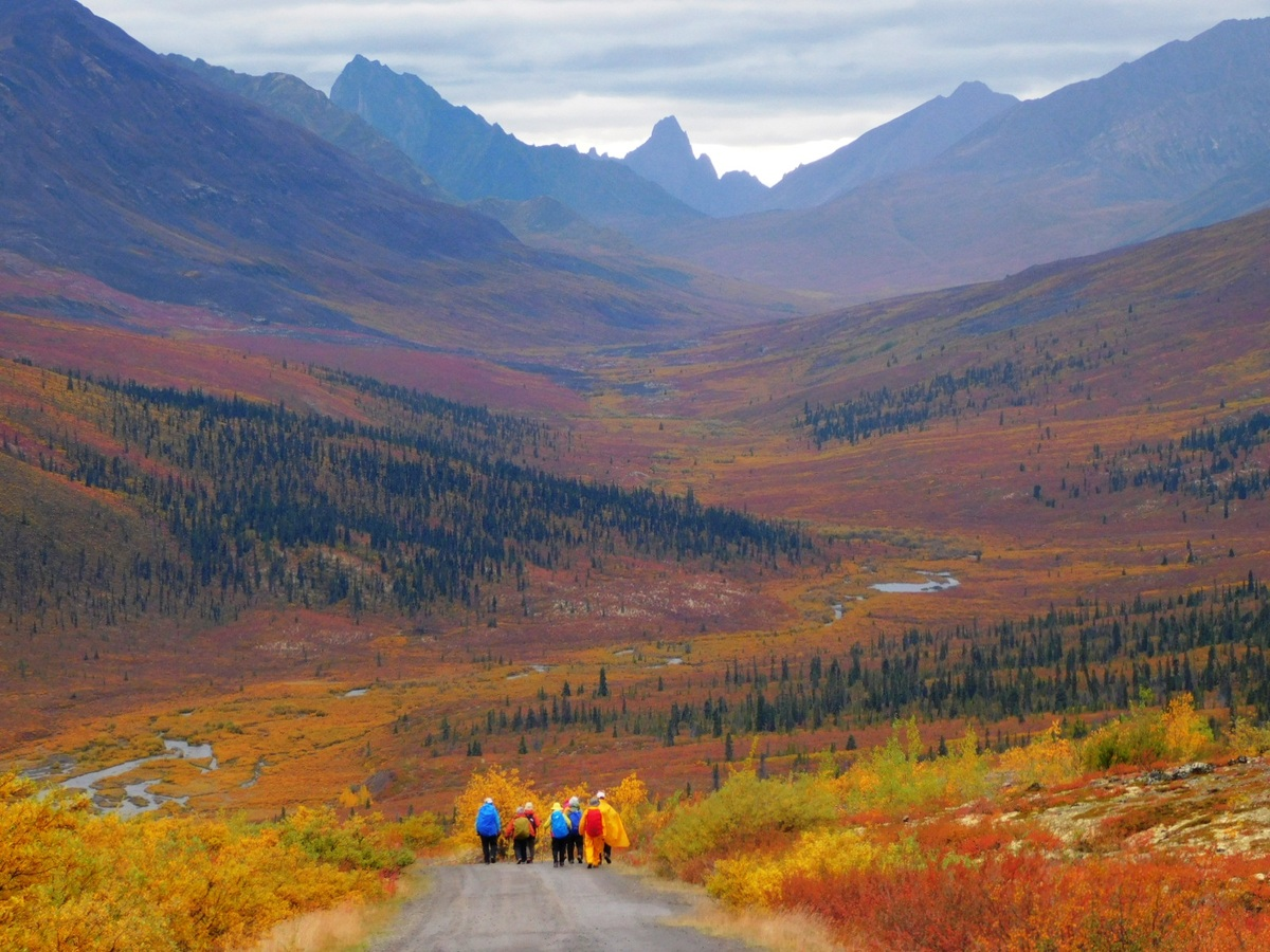 手付かずの自然が残るカナダ極北ユーコン準州